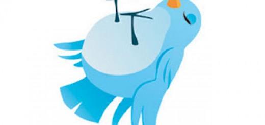 Twitter-KO