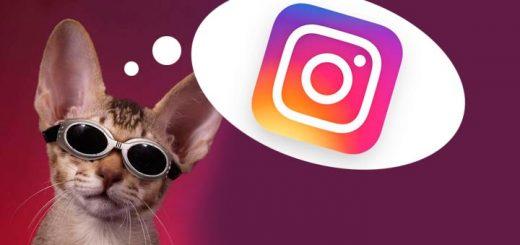 new-instagra-logo