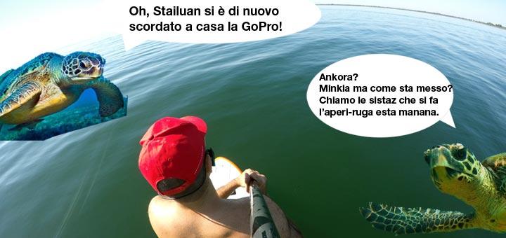 Sul lago di barcis con il sup pensieri caffelatte for Lago tartarughe
